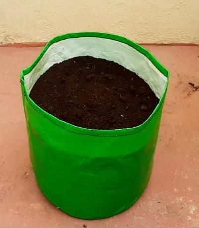 12x12 Grow Bag