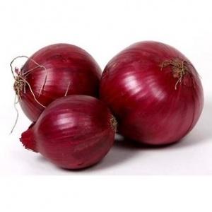 Onion Seeds / Ullipaya Seeds