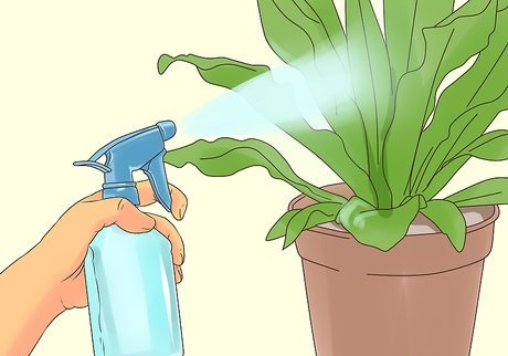 Garden Pest Controlling Kit