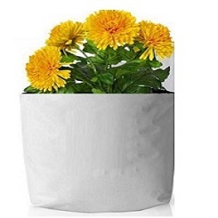LDPE Grow Bags 30x16x16 Cms (Pack of 10)