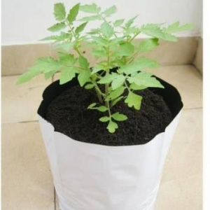 LDPE Grow Bags 40x24x24 Cms (Pack of 10)